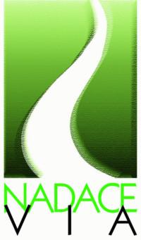 9-logo-File-logo_VIA--429x